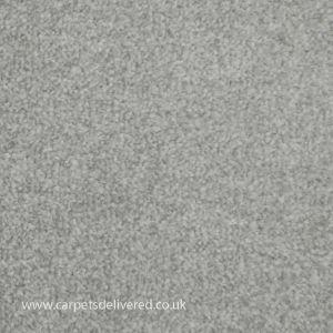 Newcastle 174 Platinum Stain Defender Easyback Carpet