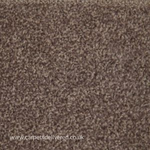 Newcastle 191 Cappucino Stain Defender Easyback Carpet