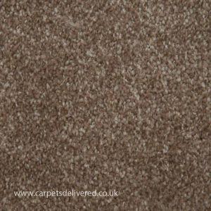 Newcastle 91 Harvest Stain Defender Polypropylene Carpet