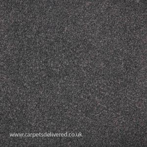 Perth 155 Pigeon Stain Defender Polypropylene Carpet