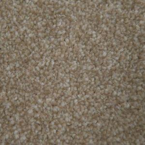 Matterhorn 69  General Domestic Carpet