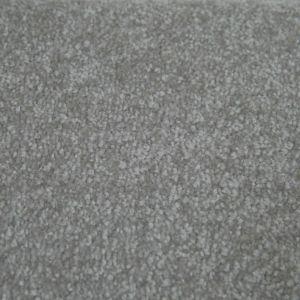 Portsmouth 20 Moondust Carpet