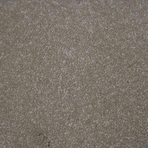 Portsmouth 62 True Beige Action Back Carpet
