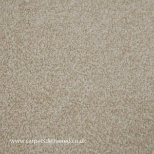 Chicago 273 Wheat Stain Defender Polypropylene Carpet