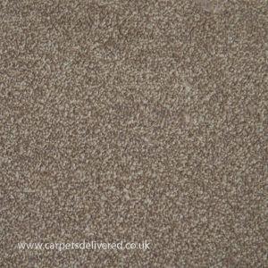 Chicago 73 Shingle Stain Defender Polypropylene Carpet