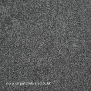 Balmorale 176 Pewter Heavy Domestic Carpet