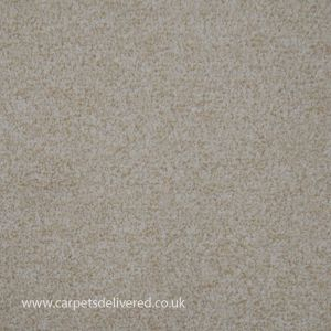 Balmorale 70 Onyx Heavy Domestic Action Back Carpet