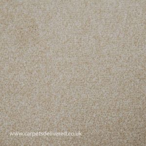 Balmorale 74 Buttermilk Heavy Domestic Carpet