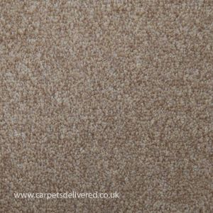 Balmorale 75 Sable Action back Carpet