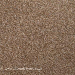 Balmorale 91 Cinnamon Heavy Domestic Action Back Carpet
