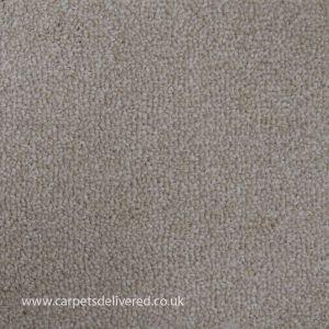 Queenstown 70 Limestone Stain Defender Polypropylene Carpet