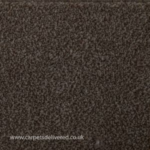 Queenstown 72 Mink Actionback Heavy Domestic Carpet