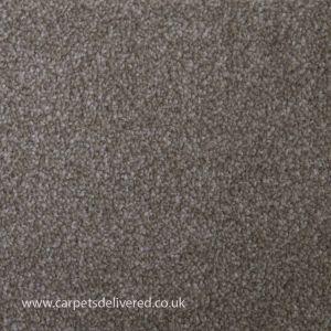 Queenstown 73 Portland Stain Defender Polypropylene Carpet