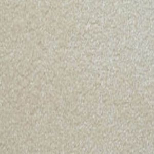 Delectable 11 Satisfying Light Beige Carpet