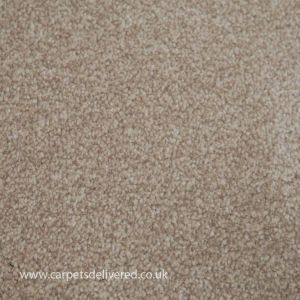 Sensit Heathers 620 Cottan Stainsafe Polypropylene Carpet