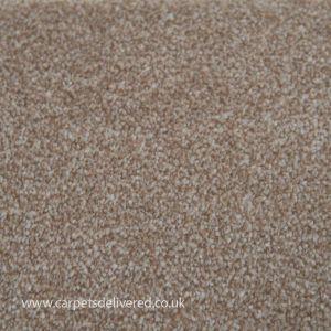 Sensit Heathers 640 Peppercorn Supersoft Stainsafe Carpet