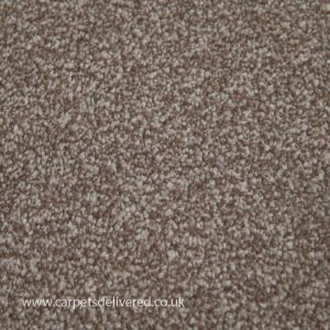 Sensit Heathers 740 Sandstone Stainsafe Carpet