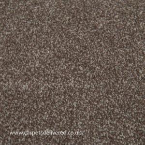 Sensit Heathers 840 Rustic Brown Stainsafe Polypropylene Carpet