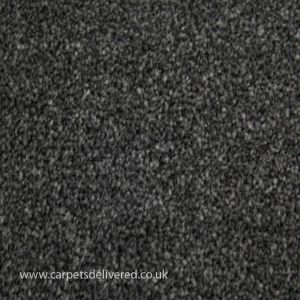 Sensit Heathers  980 Raven Stainsafe Carpet