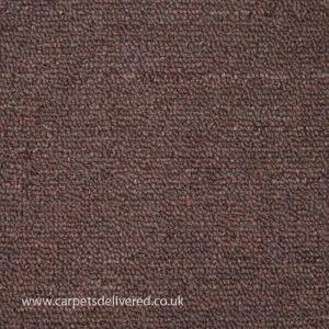 Nashville 91 Brown Stain Defender Polypropylene Carpet