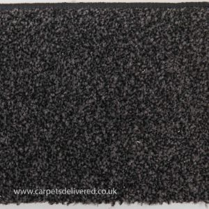 Cordoba 990 Rich Black Stain Defender Polypropylene Carpet