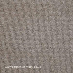 Spotlight 171 Harvest Stain Defender Polypropylene Carpet