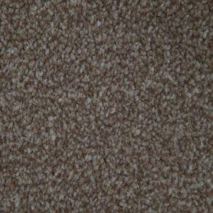 Storm 1319 Biscuit Heavy Domestic Carpet
