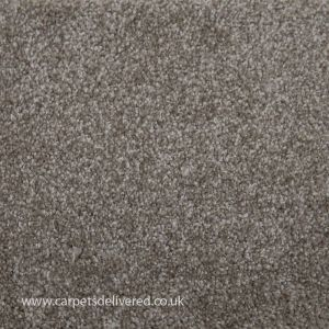 Las Vegas 172 Nickel Soft Touch Polyester Carpet
