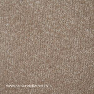 Summer 640 Stain Resistant Polypropylene Carpet