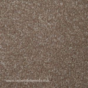 Summer 720 Heavy Domestic Carpet