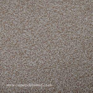 Miami 69 Light Beige Stain Defender Polypropylene Carpet