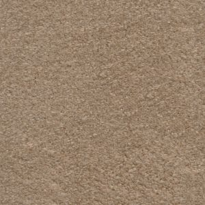 Delicious 13 Sweetheart Dark Beige Carpet