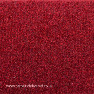 Sydney 120 Cardinal Action Back Carpet