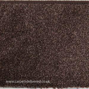 Sydney 193 Cocoa Polypropylene Carpet