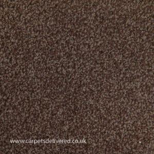 Sydney 94 Chestnut Action Back  Carpet