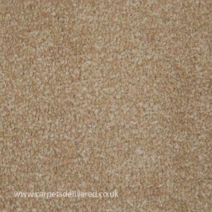 Amble 72 Fawn Heavy Domestic Carpet