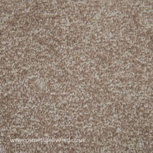 Amble 91 Chiffon Stain Defender Polypropylene Carpet