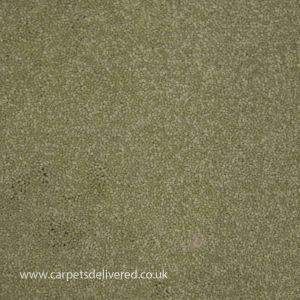 Paphos 40 Willow Stain Defender Polypropylene Carpet