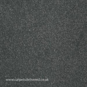 Paphos 77 Steel Stain Defender Polypropylene Carpet