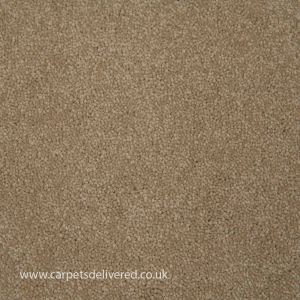 Paphos 92 Harvest Heavy Domestic Action Back Carpet