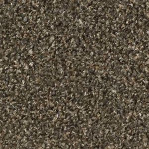 Valencia 08 Beige Speckle Twist Carpet