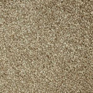 Pisa 09 Sand Dark Beige Bleach Cleanable Twist Pile Carpet
