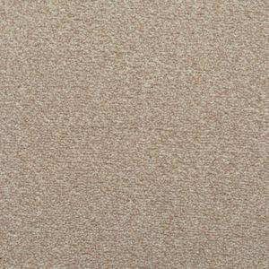 Chapter 07 Warm Light Beige Carpet