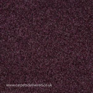 Cleveland 45 Mulberry Heavy Domestic Carpet