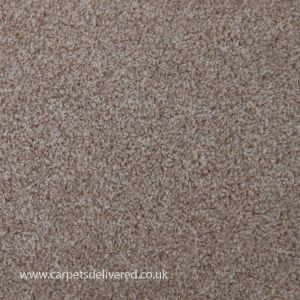 Cleveland 70 Beige Stain Defender Polypropylene Carpet