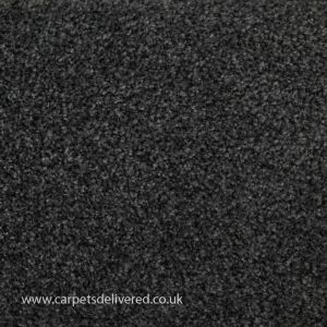 Cleveland 77 Pewter Stain Defender Polypropylene carpet