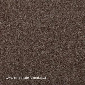 Cleveland 90 Latte Stain Defender Polypropylene Carpet